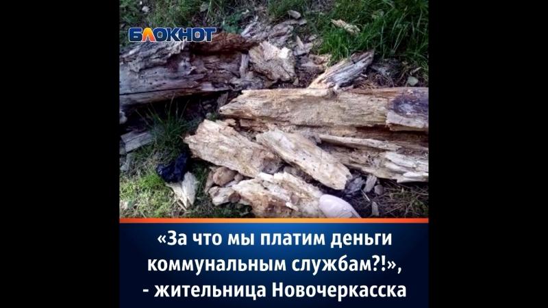 Коммунальщики в Новочеркасске