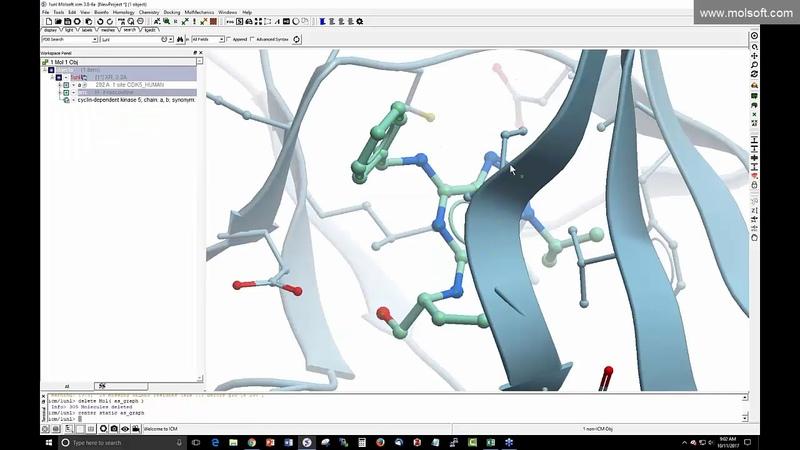 Drug Design using the ICM 3D Ligand Editor Webinar