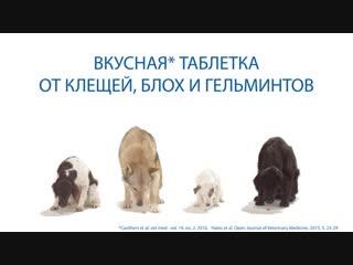 НексгарД Спектра - таблетка от клещей, гельминтов и блох для собак