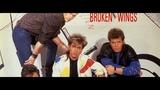 Mr. Mister - Broken Wings ( 12 Inch Long Version)