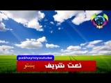 нашид pashto