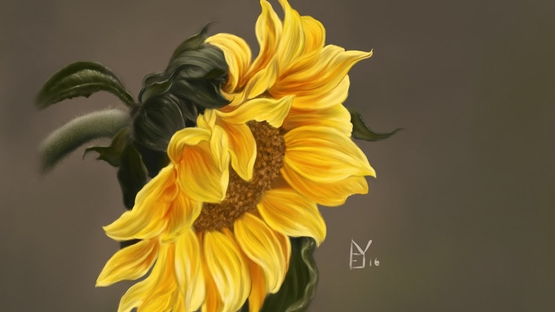 Painting a sunflower in Procreate on the iPad Pro