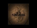 HildirEpic BlackFolk Metal From Russia - Mandragora (Single _ 2018)