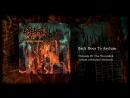 Back Door to Asylum (drum rehearsal'2018)