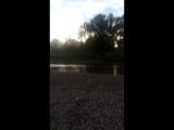 Бойко видео 372