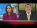 Pompeo idea president is threat to America ludicrous