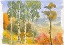 Отчёт по исследованию Лутошкин Валера Тема:В чем особенности лесного пейзажа.