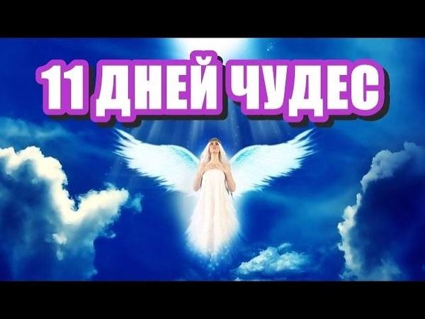 🔹ТЕХНИКА «11 ДНЕЙ ЧУДЕС»