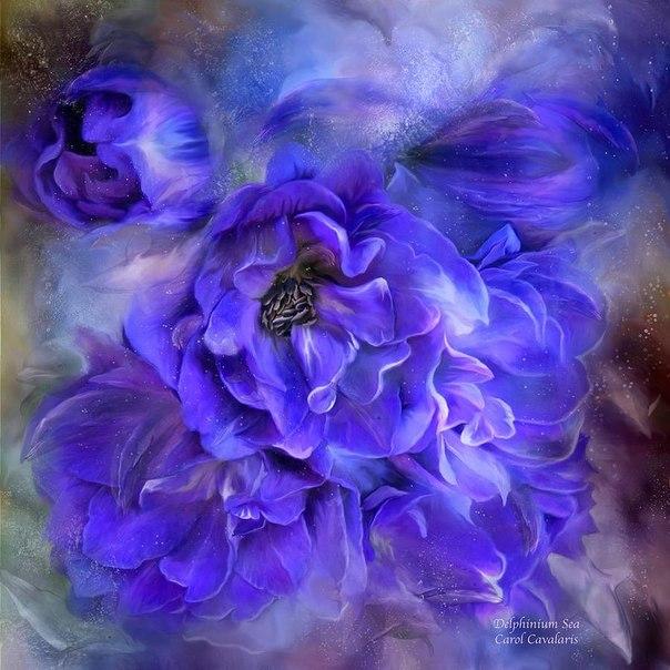 Прекрасные картины цветов от художника Carol Cavalaris