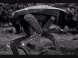 В Швейцарии робопёс научился бегать быстрее и вставать после падений только с помощью нейросетей