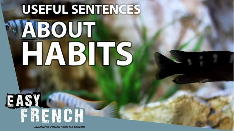 Useful sentences about habits | Super Easy French 46