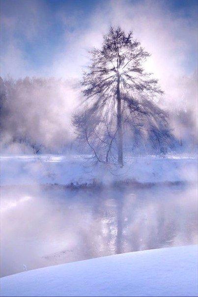 В конец зимы таится трепет весны, а под покровом каждой ночи нас ждет улыбка рас...