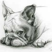 Bul Dog, 6 декабря , Санкт-Петербург, id194874764