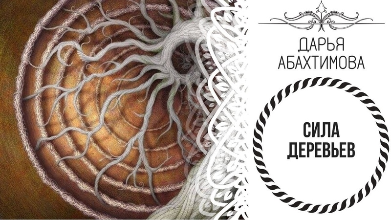 1 Минута, урок на всю жизнь - СИЛА ДЕРЕВЬЕВ (Дарья Абахтимова)