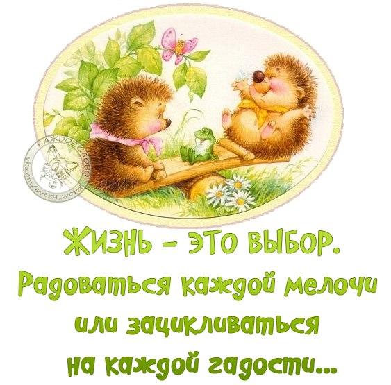 https://pp.vk.me/c7008/v7008370/5cb4/F-N2SSG9oP4.jpg