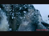 Юрий Самарский(Дёмин) - Встреча с волками