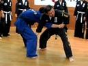 (43takedown5) Hand cross htrow arm bar(Korea jiu jitsu Gongkwon Yusul)Hapkido