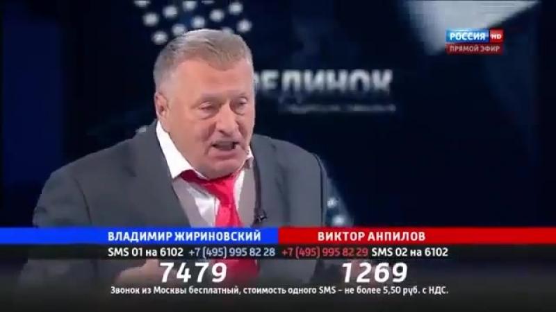 Владимир Жириновский - Если мы не остановим мигрантов, то они нас уничтожат (360