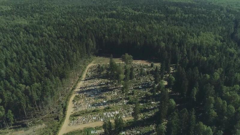 Лучше один раз увидеть, чем сто раз услышать -Сертоловское кладбище
