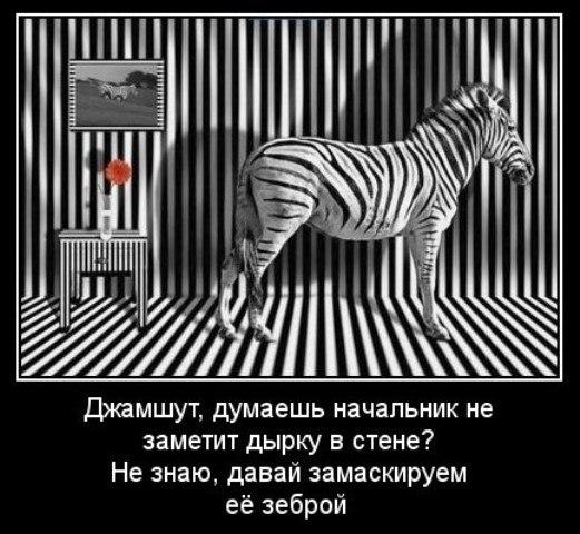 может демотиватор с зеброй мире сейчас загадочно
