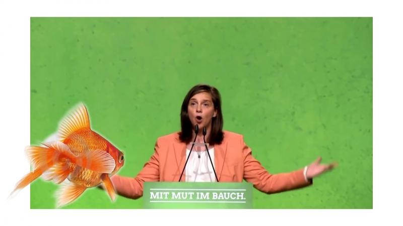 Katrin Göring Eckardt ( Grüne ) Unser Land wird sich ändern und zwar drastisch