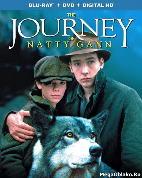 Путешествие Нэтти Ганн / The Journey of Natty Gann (1985/BDRip/HDRip)