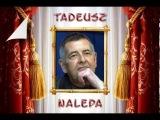 Tadeusz Nalepa - Co to jest