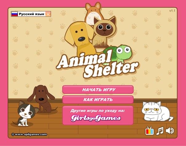 игры для девочек онлайн бесплатно гонки на двоих