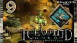 Icewind Dale Прохождение #9 Сын кузница и мать Эгения