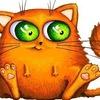 Типичный котэ :3