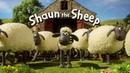 Барашек Шон 3 сезон 2 часть Shaun the Sheep 3 season 2 part