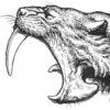 Юные палеонтологи и антропологи Ростова
