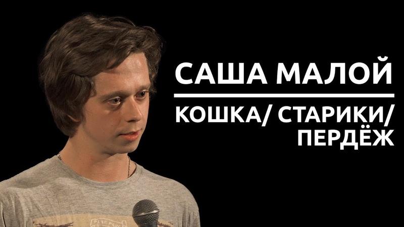 Саша Малой - Кошка старики пердёж