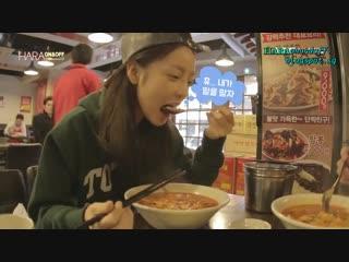 한국어가입니다