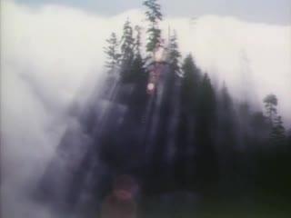 Joni Mitchell - Wild Things Run Fast