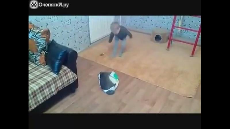 Веселая игра мальчугана и котика )