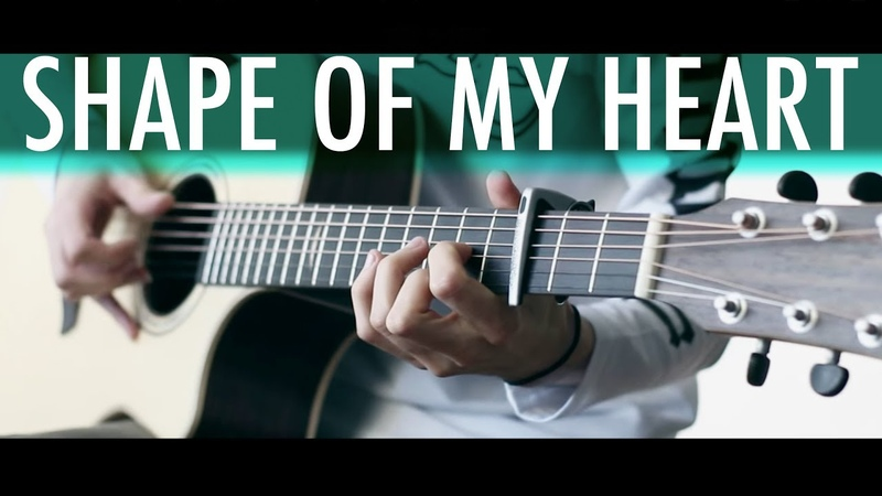 SHAPE OF MY HEART Sting ⎪Acoustic guitar fingerstyle