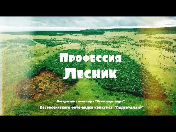Образовательный фильм Профессия Лесник