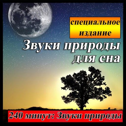 Звуки Природы альбом Звуки природы для сна: 240 минут специальное издание