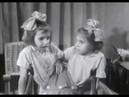 Сиамские близнецы © Siamese twins, twinned twins