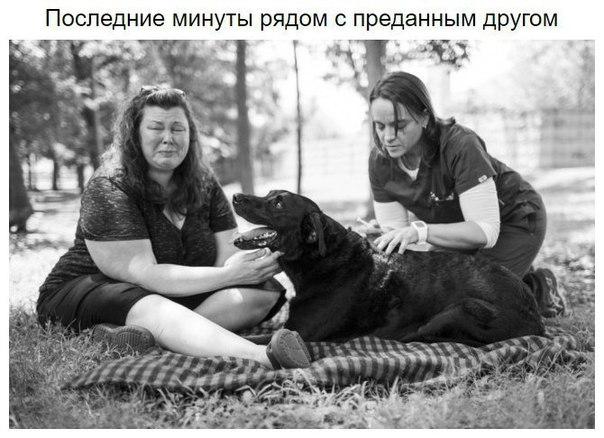 Фото №456252440 со страницы Алексея Мальцева