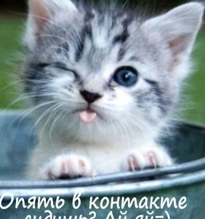 Екатерина Карпова, 28 мая , Челябинск, id181598829