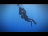 Под водой с... - Мальта. Затонувшие корабли
