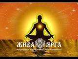 Владимир Куровский. Жива-Ярга: медитация на все случаи жизни.