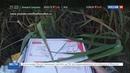 Новости на Россия 24 • В Ростовской области обнаружили свалку вскрытых посылок