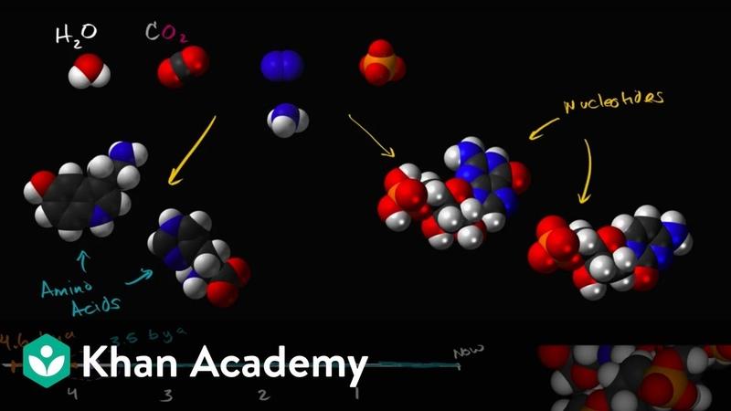 Origins of life Biology Khan Academy