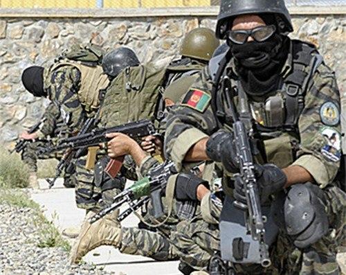 Разрешенный вид бойца на тренировках и приватках WPkuLISFbTQ