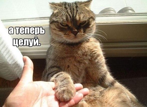 ОгОгОго)