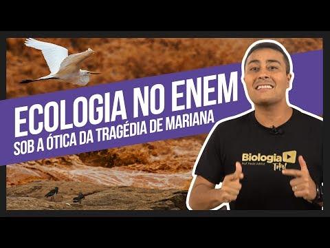 Ecologia no ENEM sob a ótica da Tragédia de Mariana