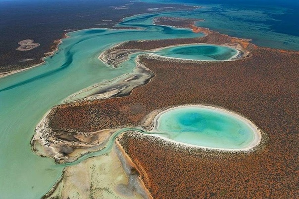 Бирридас: уникальные гипсовые озера Австралии, куда летят на зимовку птицы из Сибири Место, где на западе Австралия встречается с Индийским океаном, давно славится своими уникальными пейзажами.